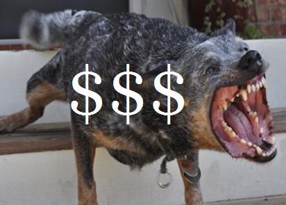 animal attack $----